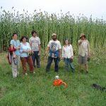 sandhill_farm_25041