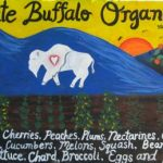 white_buffalo_farm_95001