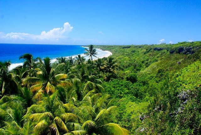 Free Land on a Tropical Island 1