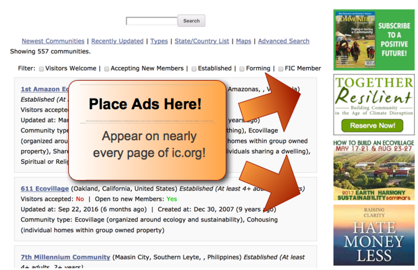 Advertising on the website