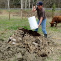 Improve Your Soil – Bury Yard Waste