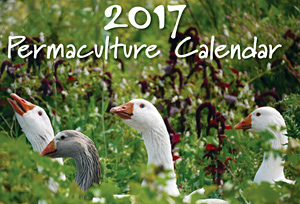 Permaculture Wall Calendar