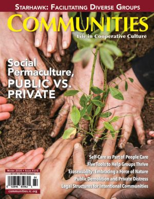 Social Permaculture - Communities Magazine Cover - Winter #173