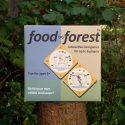 Play The Food Forest Card Game and Help Plant 1,000s of Trees