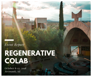 Regenerative CoLab Report