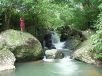 BEAUTIFUL 8 ACRE TITLED PROPERTY IN VILLAGE OF SANTA FE FOR SALE IN THE COOL MOUNTAINS OF PANAMA.