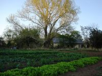 Country Gardens Farm — Founding Ecological Intentional Community in north central OK