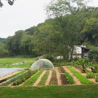 24 acre market farm/homestead Indiana