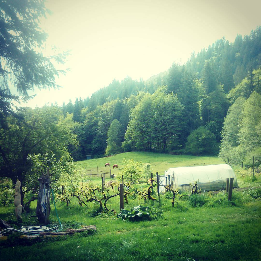 River Farm - Foundation for Intentional Community on