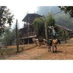 Black Bear Ranch