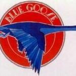 Blue Goose Commons
