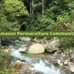 Amazon Permaculture Community