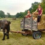 Bear Creek Community Land Trust