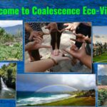 Coalescence Ecovillage