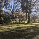 Harmony Terrace of Tampa Bay