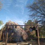 Rewild Florida at Selvas Farms