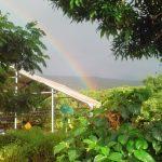rainbow over one island 2